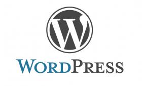 Remover tag de parágrafo dos posts do wordpress