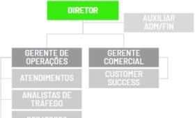 Organograma Funcional em Agências de Marketing Digital